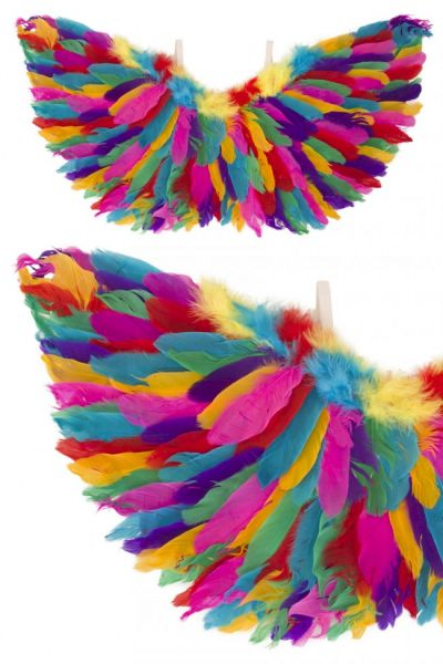 Angel wings rainbow feathers
