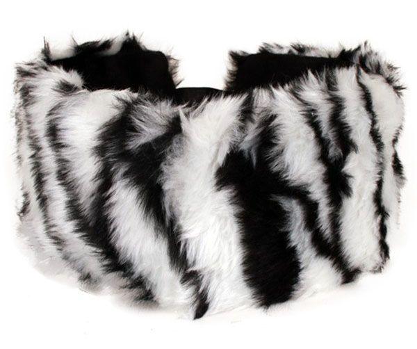 Head-band zebra