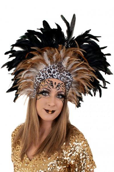 Indians feather headdress Panther
