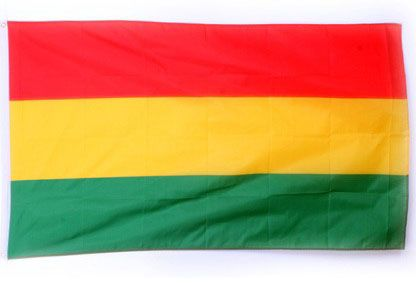 Carnival flag luxury red yellow green