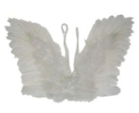 Angel wings white feather child